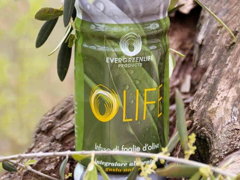 Benefici di Olife Evergreen Life