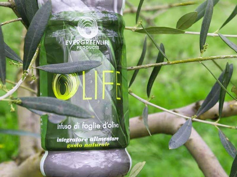 Olife - Estratto acquoso di foglie di ulivo 1 litro