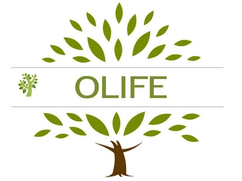 Olife: lo straordinario infuso di foglie di olivo